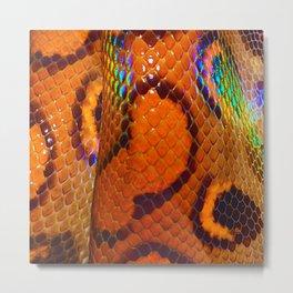 Rainbow Boa Metal Print