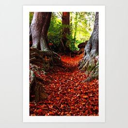 autumn path Art Print