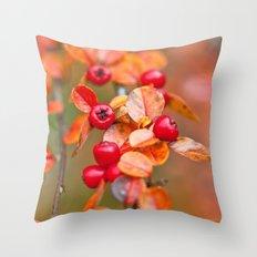 Autumnal Cotoneaster 9379 Throw Pillow