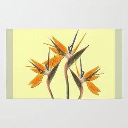 Three Paradise Flowers Strelitzia yellow R Rug