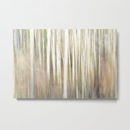 Abstract Aspens Metal Print