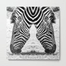 Zebra Ballet Metal Print
