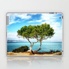 Tree in Focus Laptop & iPad Skin