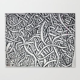 Noodles or Worms Canvas Print