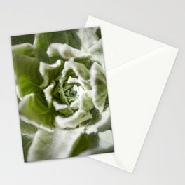 Lamb's Ear Stationery Cards