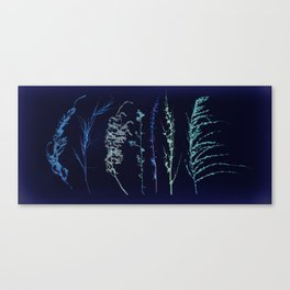 Winter Grass Canvas Print