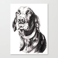 charlie Canvas Prints featuring Charlie by Hana Robinson