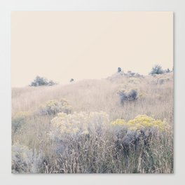 August Gold Canvas Print