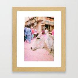 INDIA 26 Framed Art Print