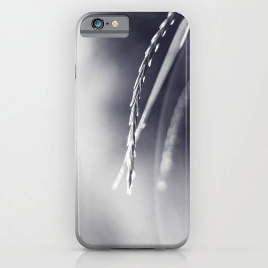 Evening Light in Black and White iPhone & iPod Case