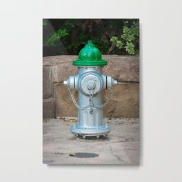 Super Centurion in Sliver and Green Fire Hydrant Fire Plub Metal Print