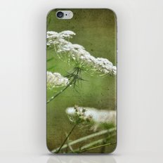 Queen Ann's Lace iPhone & iPod Skin