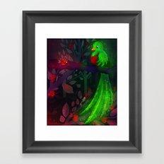 Quetzal Framed Art Print
