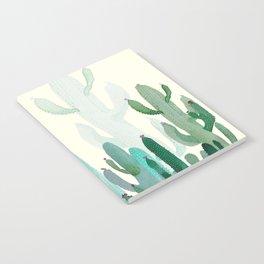 cactus3 Notebook