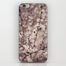 Spring Floral Branches in Sepia iPhone & iPod Skin