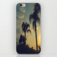 florida iPhone & iPod Skins featuring Florida by Jillian Stanton