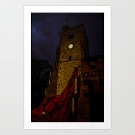 night poppies Art Print