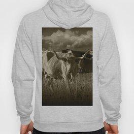 Sepia Tone of Texas Longhorn Steers under a Cloudy Sky Hoody
