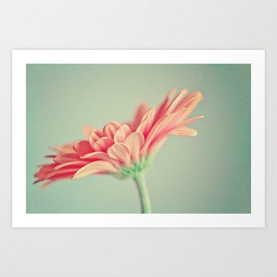 Darling Gerber Daisy  Art Print