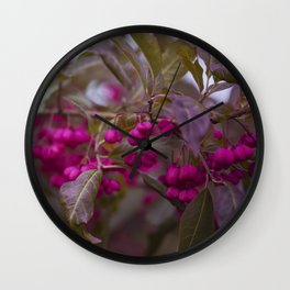 Fruits of Autumn in bold pink Wall Clock