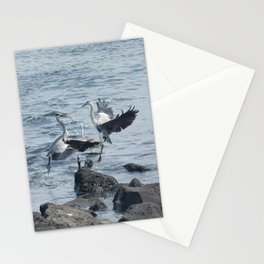 Migratory birds flapping their wings in the korea Jeju sea. Stationery Cards