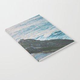 Point Reyes Notebook