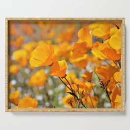 California Gold Poppies by Reay of Light Photography Serving Tray