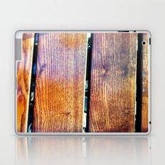 Central Park Picnics Laptop & iPad Skin