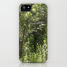 Summer Forest 2 iPhone Case