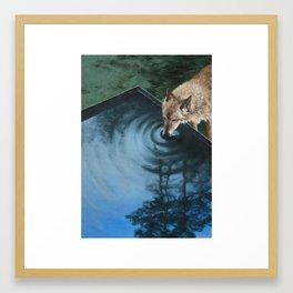 Yusuf Framed Art Print