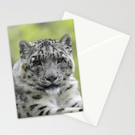 Leopard 010 Stationery Cards