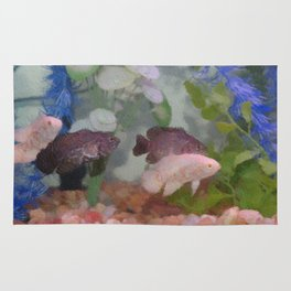 Four Oscars swimming in an aquarium (Painted) Rug