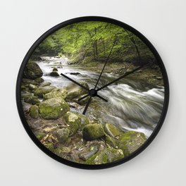 Mountain Stream in the Smoky Mountains Wall Clock