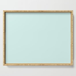Light Cyan Soft Mint Green Solid Matte Colour Palette Serving Tray