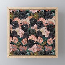 Because Black Pug Framed Mini Art Print