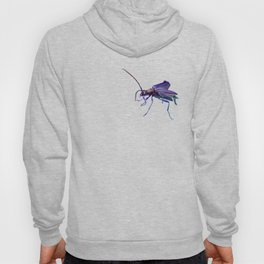 Get ready for take-off Hoody