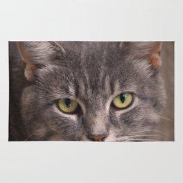 Kitty Kat Rug