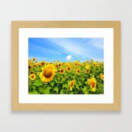 Sun Eating Flowers Framed Art Print