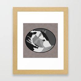 Paint Horse in Grey Framed Art Print