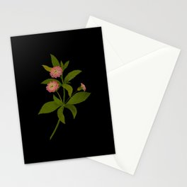 Lantana Trifolia Mary Delany Vintage Paper Flower Collage Floral Botanical Art Stationery Cards