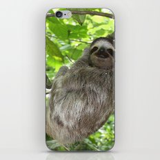 Sloths in Nature iPhone & iPod Skin