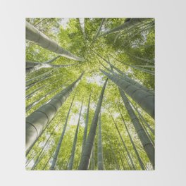 Bamboo forest in Japan Throw Blanket