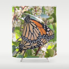 Love in the Air - Monarch Style Shower Curtain
