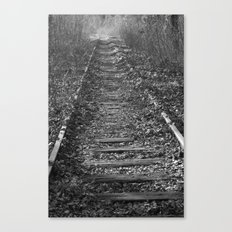 tracks in the forest Canvas Print