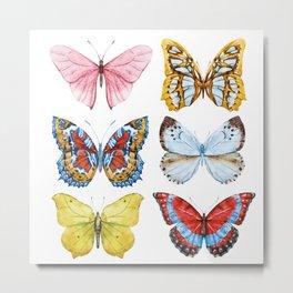 Butterflies 01 Metal Print