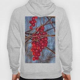Grapes Schisandra autumn Hoody