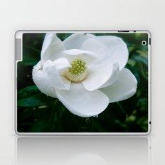 Magnolia Flower Laptop & iPad Skin