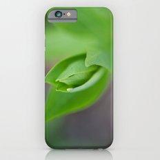 Fresh iPhone 6s Slim Case
