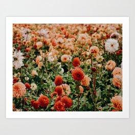 Vintage Flower Garden (Color) Art Print