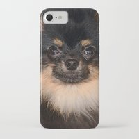 pomeranian iPhone & iPod Cases featuring Pomeranian by Pancho the Macho